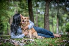 mascota-amor-retrato-perro
